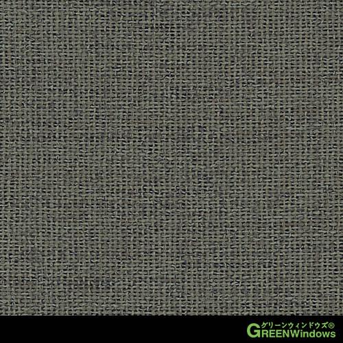 G2823-12 (Shadow)