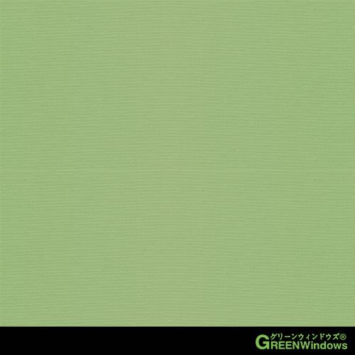 R5-501F (Green)