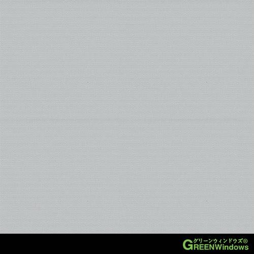 R5-501G (Grey)
