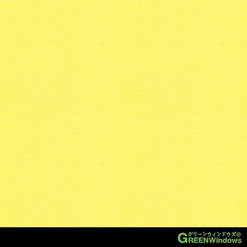 R5-501T (Yellow)