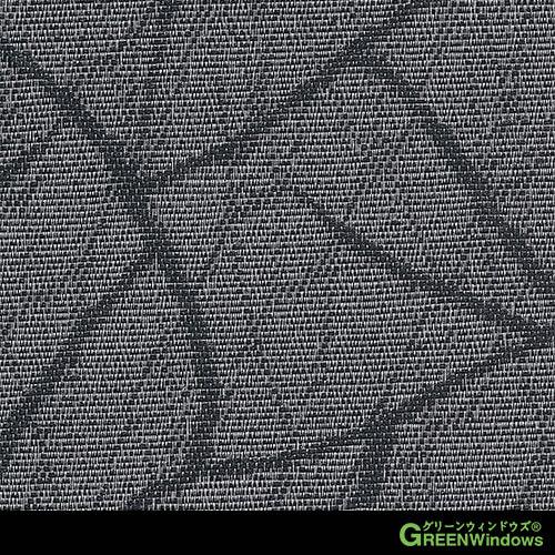 R6-666N (Black)